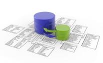 Software & Database Development